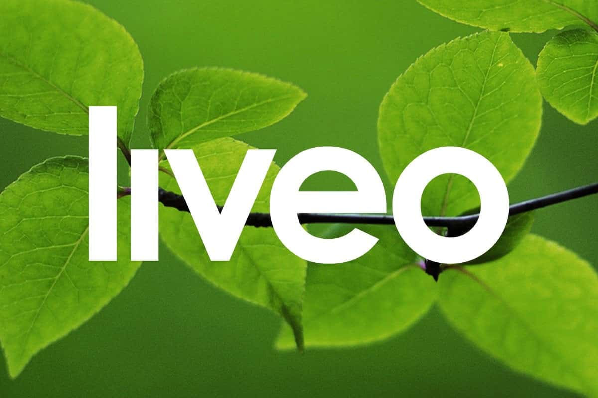 Liveo Project